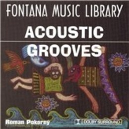 Acoustic Grooves 1